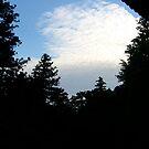 Tranquil Sky by Cranemann