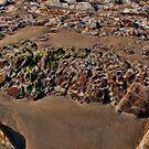 Gaviota Beach 2 by Renee D. Miranda
