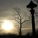 Sunset post by Cranemann