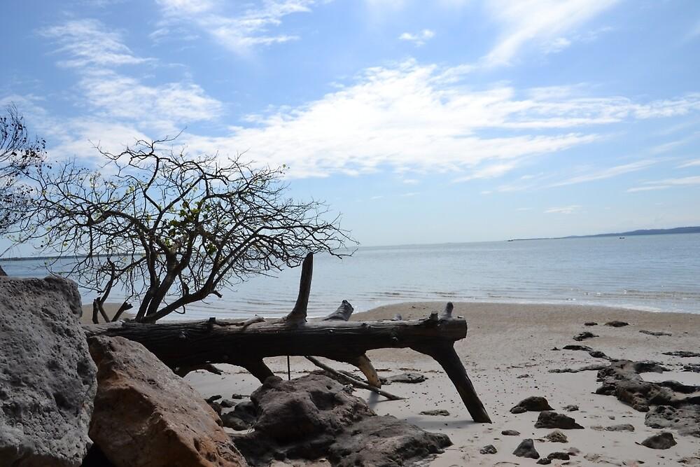 Beach at Tinnanbah by TheaShutterbug