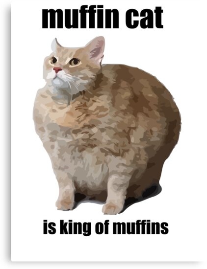 Cat Meme by 305movingart