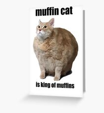 Cat Meme Greeting Card