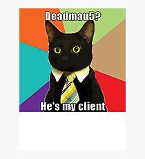 Cat Meme Photographic Print