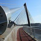 Finistère - Le Pont de Térénez. by Jean-Luc Rollier