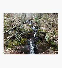 Small But Beautiful Flowing Waterfall - Off the Blue Ridge Parkway Photographic Print