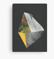 Beyond the Edge 2 Canvas Print