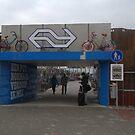 Train station by Henk van Kampen