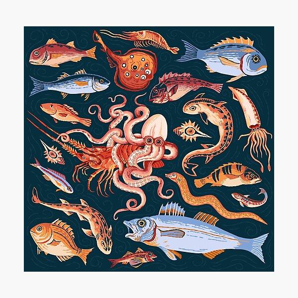 Roman Marine mosaic  Photographic Print