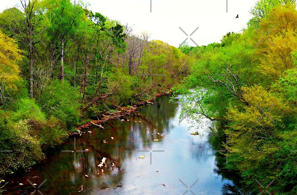 Chattahoochee River, Atlanta, Ga. by Scott Mitchell