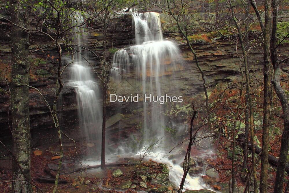 Lower Haley's Waterfall of Arkansas by David  Hughes