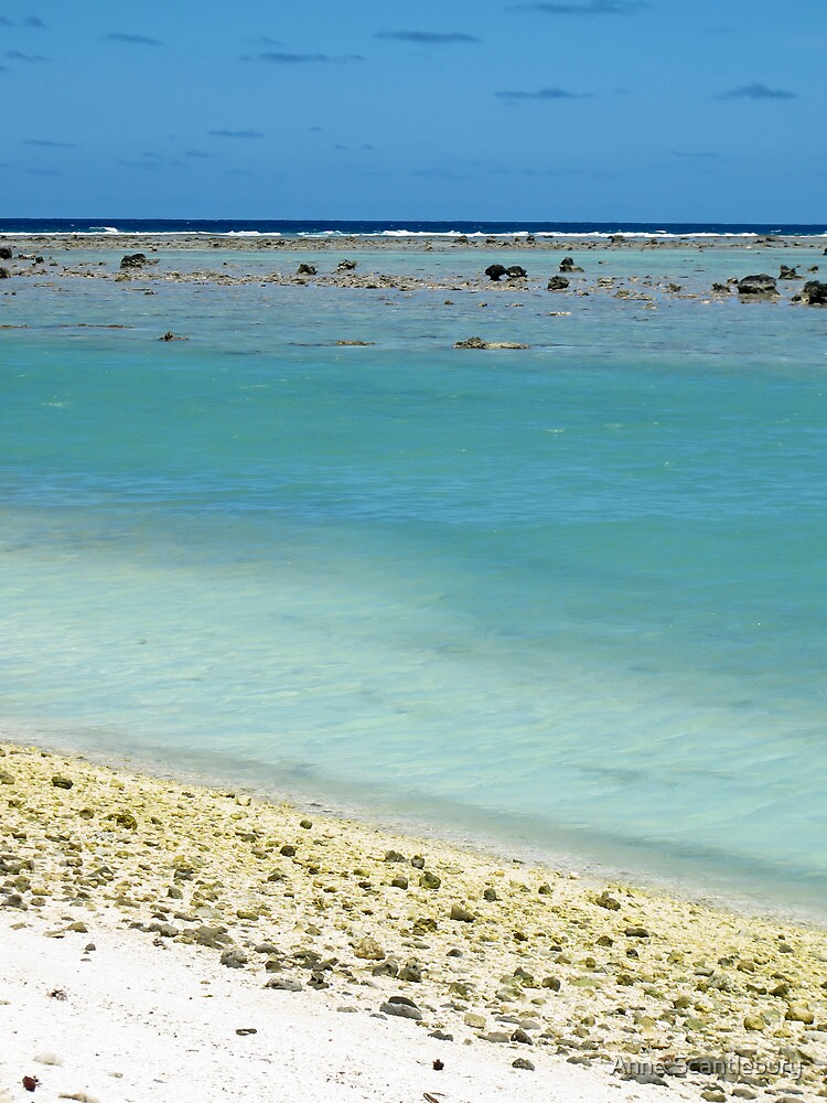 beach Rarotonga by Anne Scantlebury