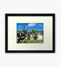 ruins at Rarotonga Framed Print
