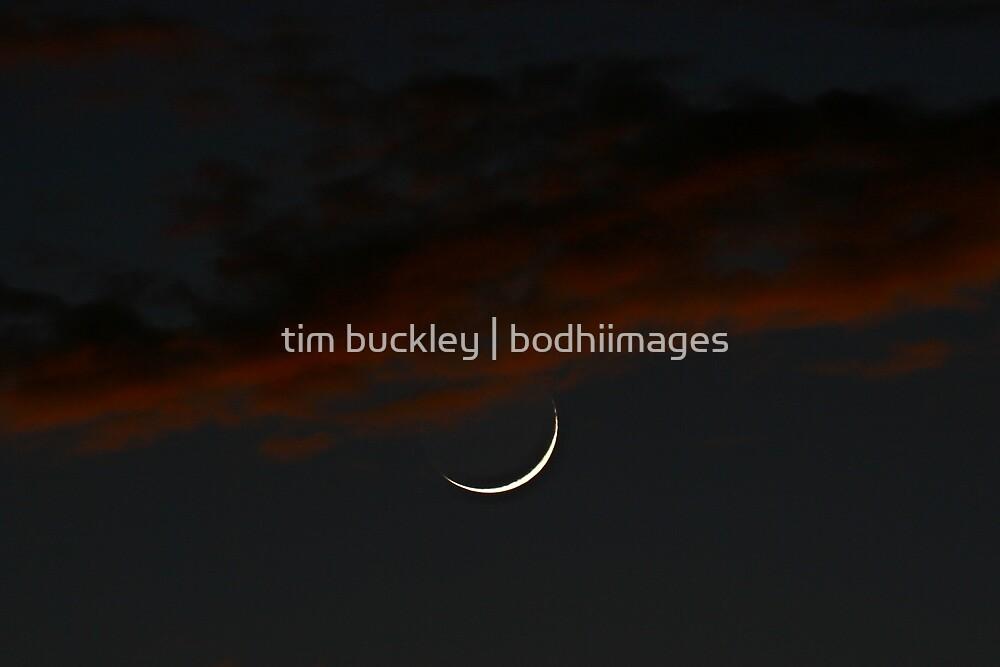 last crescent moon. tasmania, australia by tim buckley | bodhiimages