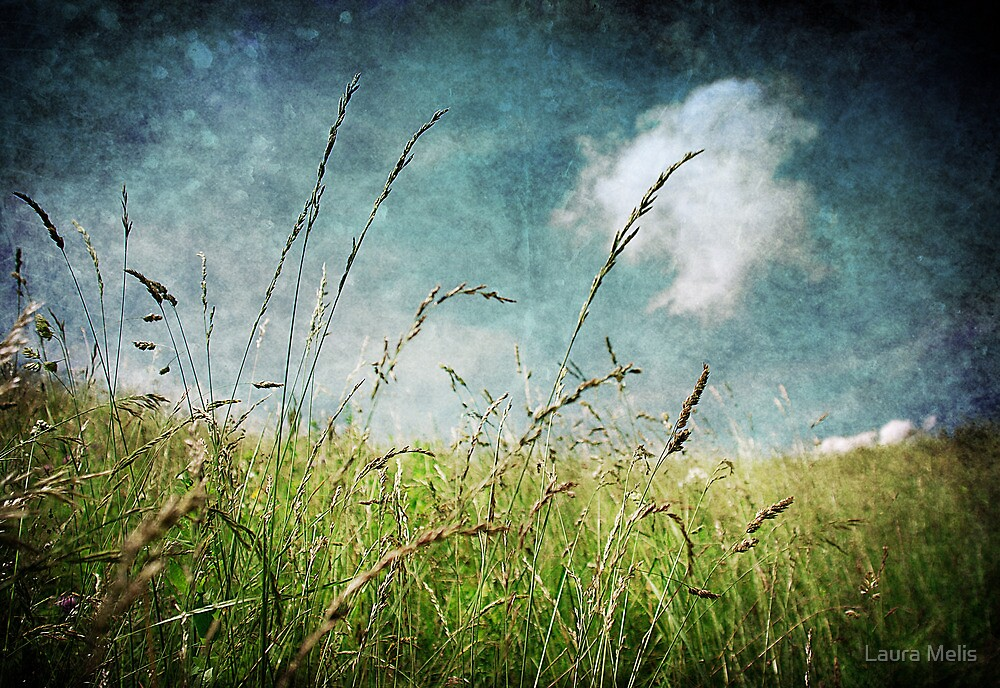 Nature by Laura Melis