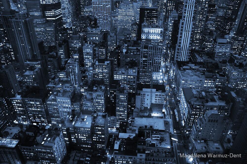 New York skyscrapers, cyanotype by Magdalena Warmuz-Dent