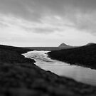 Dark River #1 by Steve Edwards