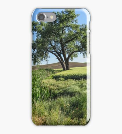 Lone Cottonwood iPhone Case/Skin