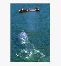 Whale Music (1) Photographic Print