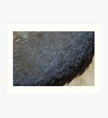 Thatching anyone , our waterproofed native hen , detail Art Print