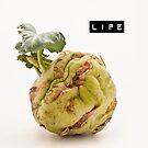 Life by Henrietta Hassinen