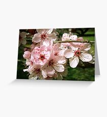 Spring Cluster Greeting Card
