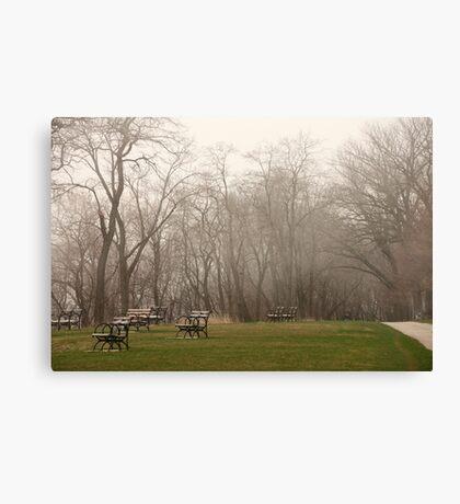 Lake Park Foggy Landscape Canvas Print