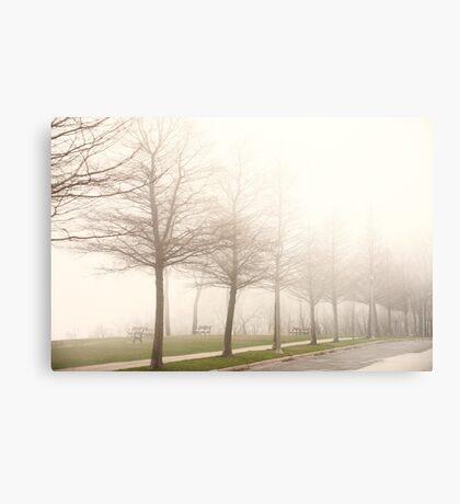 Foggy Sidewalk Scene Metal Print