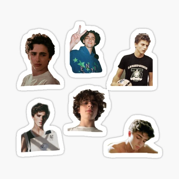 Timothee Chalamet Sticker Pack Sticker