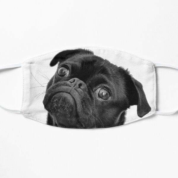 Black pug Flat Mask