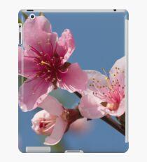 peach blossom in spring iPad Case/Skin
