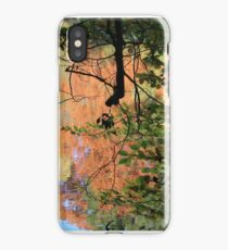 Autumn in the Netherlands iPhone Case/Skin
