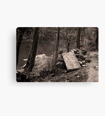 Woodlands Canvas Print