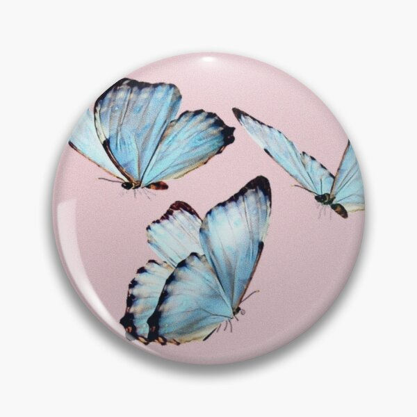 butterfly aesthetic tumblr  Pin