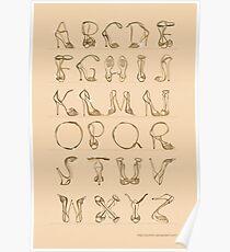 Shoes alphabet! Poster