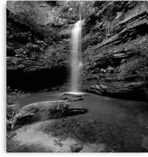 Dante's Glen by Mark  Lucey