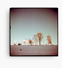 Winter horizont Canvas Print