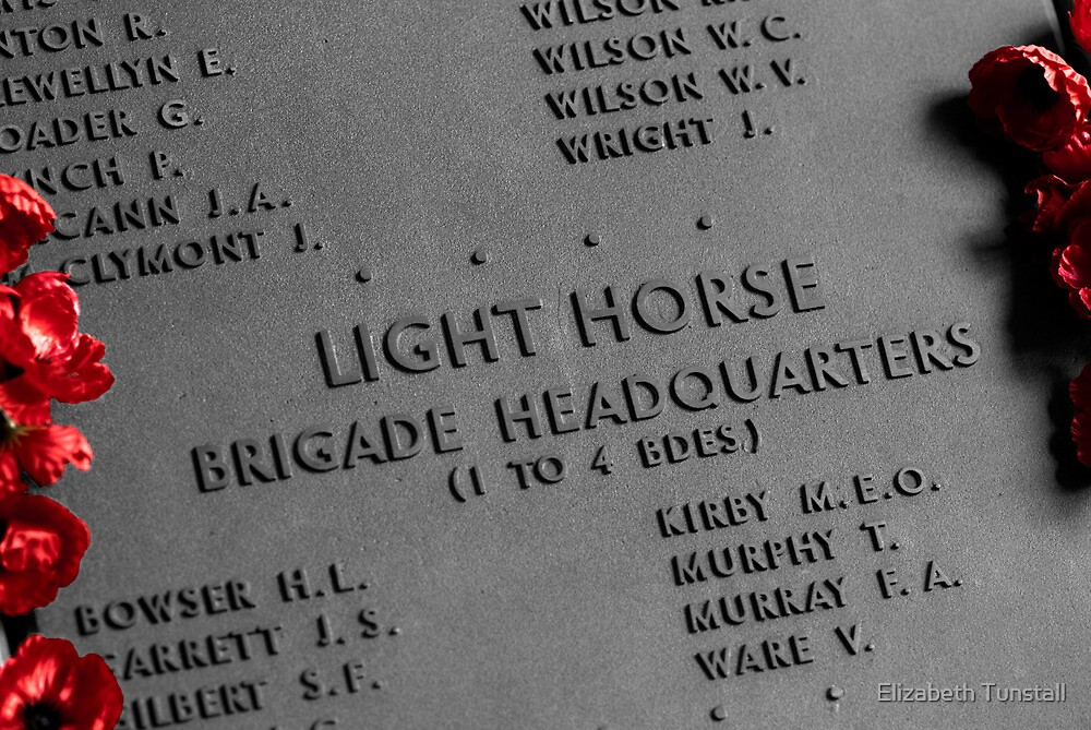 The Light Horse by Elizabeth Tunstall
