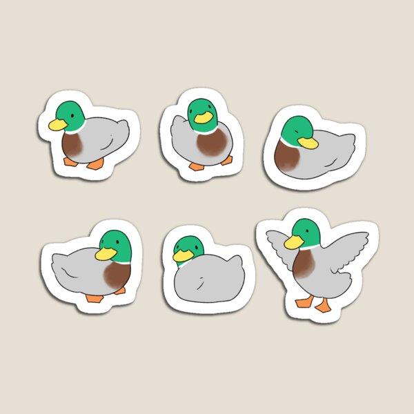 Ducks (mallard) Magnet