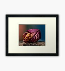 Memory of a Lost Love Framed Print