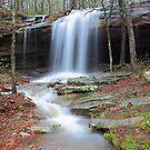 Upper Haley's Falls of Arkansas by David  Hughes