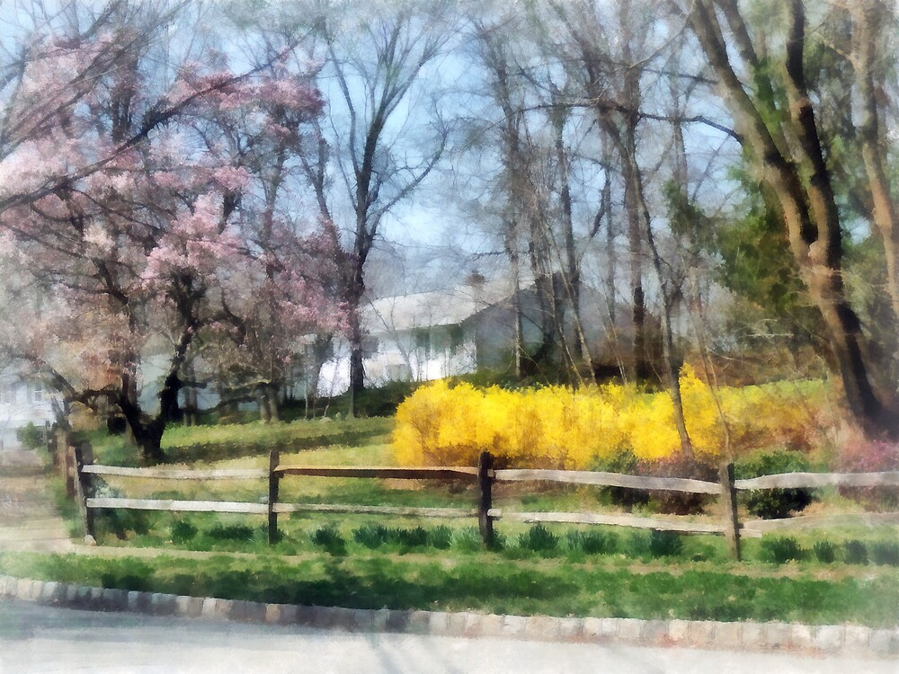 House With Magnolias and Forsythia by Susan Savad