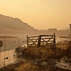 Blea Tarn by Brian Kerr