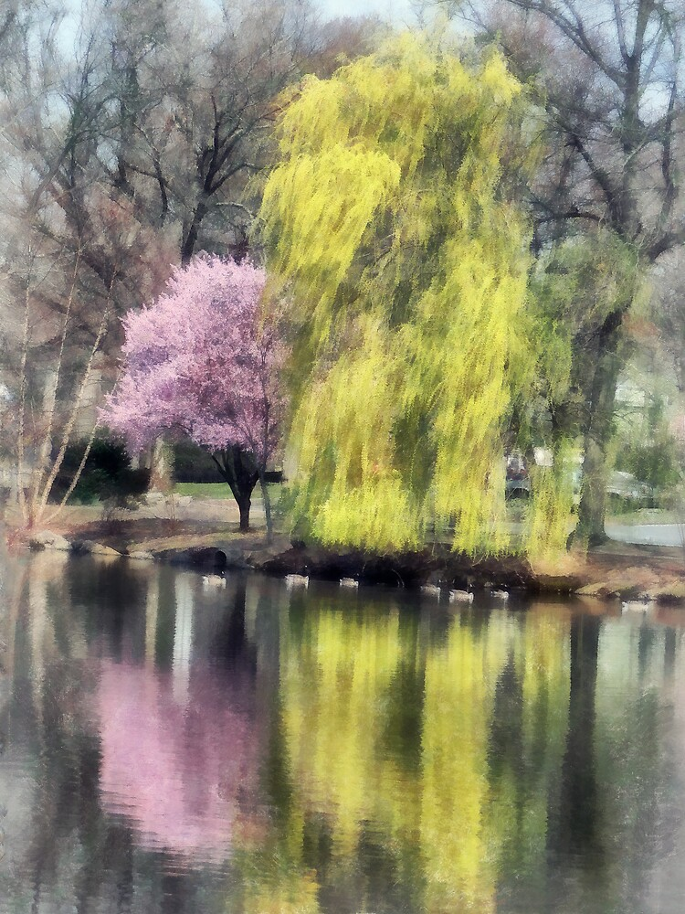 Willow and Cherry by Lake by Susan Savad