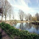 The Chelmer - Early spring river view by Phill Sacre