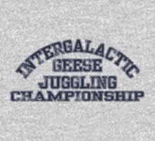 Intergalactic Geese Juggling Championship