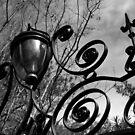 Charleston Iron Works by Wendy Mogul