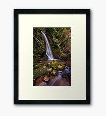 Mclarens single fall Framed Print
