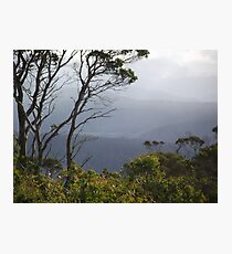 views by Devils Gullet Photographic Print