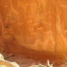 Bushman art - African heritage by Irene  van Vuuren