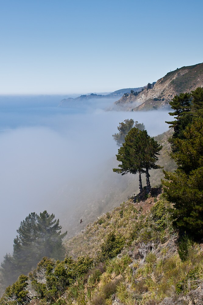 Sea mist and eagle by gematrium